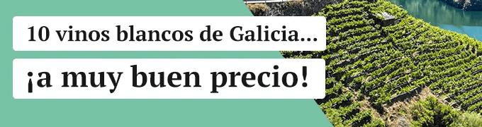 Vino Gallego - 10 blancos a muy buen precio
