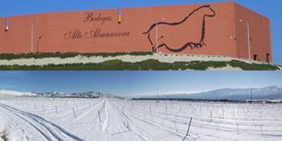 Vista de la bodega desde la carretera a Lúcar y viñedos bajo la nieve. FOTO: Bodegas Alto Almanzora.