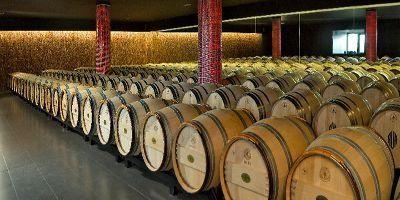 Antiguas Viñas de Rioja