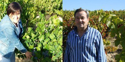 Berarte Viñedos y Bodegas