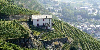 Casa Vinicola Nino Negri
