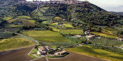L'Azienda e Montalcino
