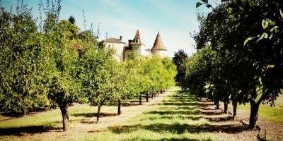 Château du Frandat