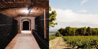 Maria Rigol Ordi - Buy wines - Vinissimus
