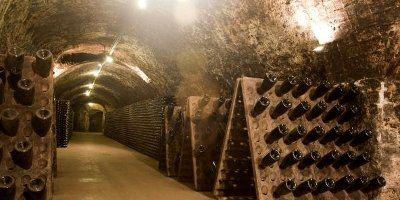 Caves Roger Goulart