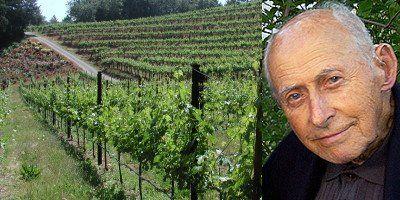 Vista del viñedo de las laderas de Red Rock Terrace y del desaparecido Al Brounstein, fundador de la bodega. FOTO: Diamond Creek Vineyards.
