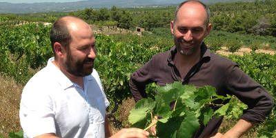 Epicure Wines