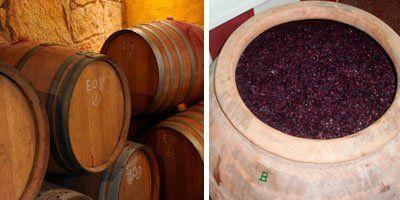 Celler Ficaria Vins