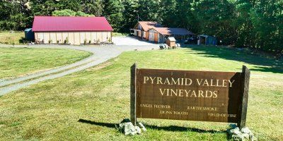 Pyramid Valley Vineyards