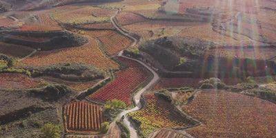 Ukan Winery