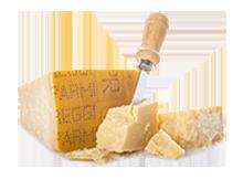 Parmigiano / Barolo