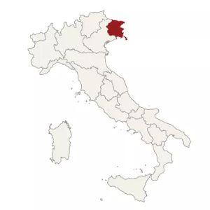 Il Friuli: ribolla e friulano