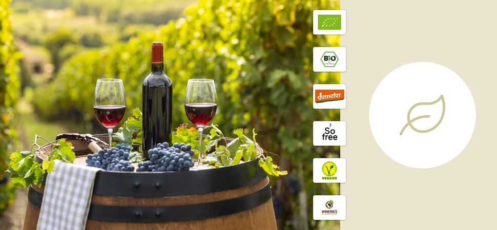 vinos ecològicos y biodinàmicos