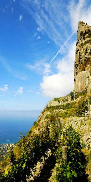 Du Vésuve à Vulture : les volcans du Sud et leurs vins