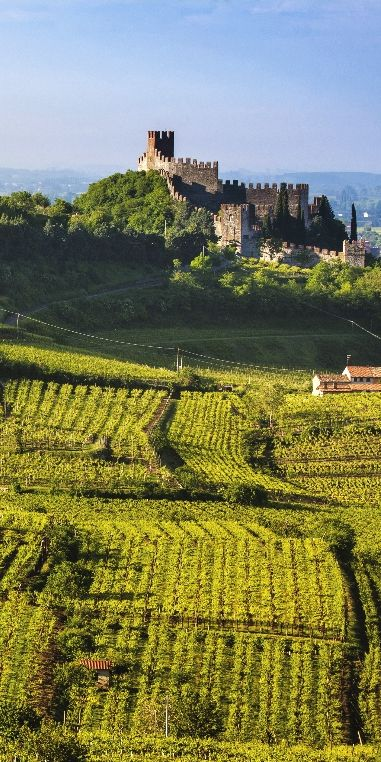Soave and upper Piedmont: ancient volcanoes of northern Italy