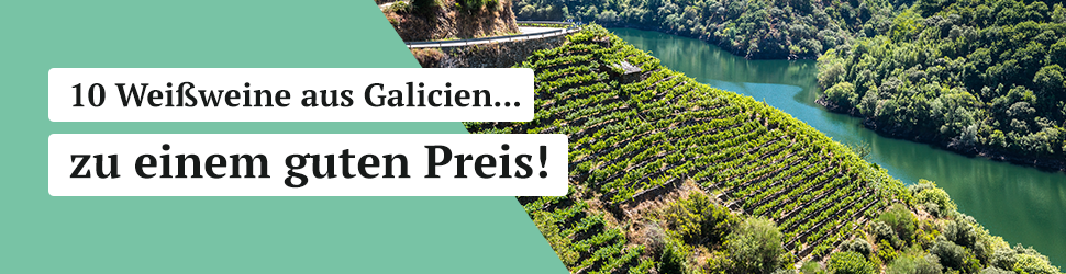 10 Weißweine aus Galicien zu einem guten Preis