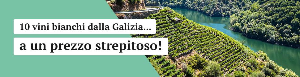 10 vini bianchi dalla Galizia a un ottimo prezzo