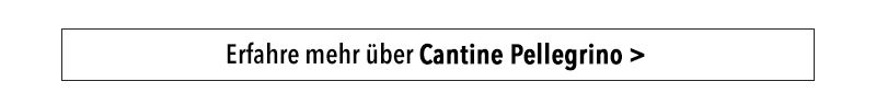 Erfahre mehr über Cantine Pellegrino