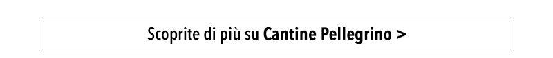 Scoprite di più su Cantine Pellegrino