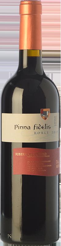 Pinna Fidelis Roble 2018