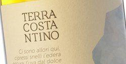 Terra Costantino Etna Bianco De Aetna 2016