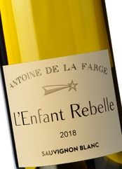 Antoine de la Farge L'Enfant Rebelle Blanc 2018