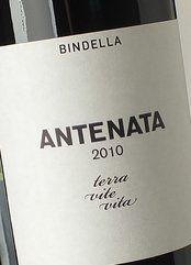 Bindella Merlot Antenata 2013