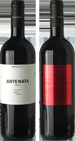 Bindella Antenata 2013