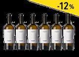 Box Cincinnato 6 bottiglie