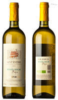 Col d'Orcia Pinot Grigio 2019