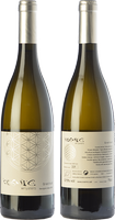 Còsmic Gratitud Sauvignon Blanc 2017