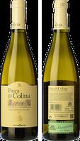 Finca La Colina Sauvignon Blanc 2018