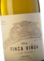 Finca Viñoa Paraje Penaboa 2014
