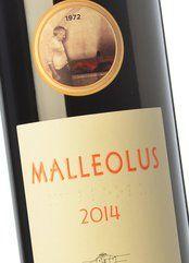 Malleolus 2014