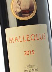 Malleolus 2015 (Magnum)