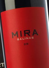 Mira Salinas 2011