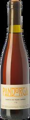 Pandorga PX 2015