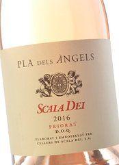 Pla dels Àngels de Scala Dei 2017