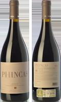 Phincas 2014