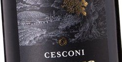 Cesconi Lagrein Pletter 2015
