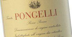 Villa Bucci Rosso Piceno Pongelli 2014