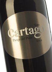 Cartago Paraje del Pozo 2015