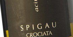 Rocche del Gatto Spigau Crociata 2010
