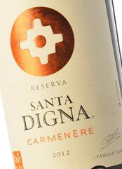 Santa Digna Carmenère 2017