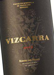 Vizcarra 2013