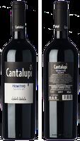 Conti Zecca Cantalupi Primitivo 2017