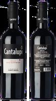 Conti Zecca Cantalupi Salice Salentino 2018