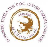 Carema logo