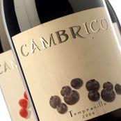 Cámbrico Tempranillo 2006