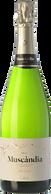 Muscàndia Balsam Brut 2015